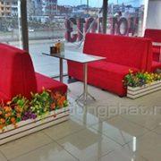 sofa-cafe-03