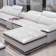 Ghế Sofa Cao Cấp Màu Sắc Hài Hòa Trang Nhã